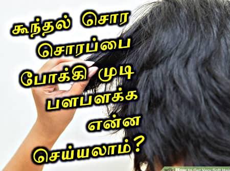 தலை முடி வழு வழுவென பளபளக்க என்ன செய்யலாம்? கூந்தல் சொர சொரப்பு நீங்கி மிருதுவாக டிப்ஸ்.  'ஹென்னா வேக்ஸ்' எப்படி பயன்படுத்துவது? How to get soft hair tips in tamil, Beauty Tips, Ladies tips in tamil, Pengal.com, natural Hair softener, iyarkkai alagu kurippugal