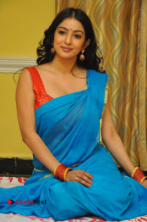 Telugu Actress Vaibhavi Stills in Blue Saree at Www.Meena Bazaar Movie Opening  0091.JPG