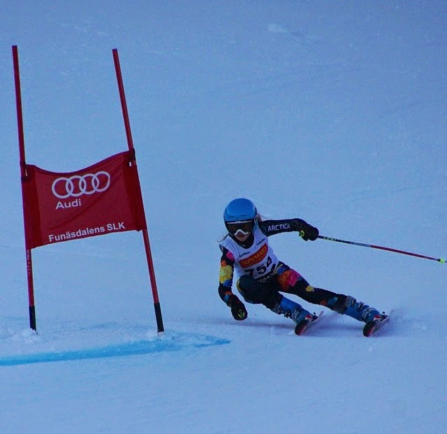 Hard lessons to be learned from ski racing.