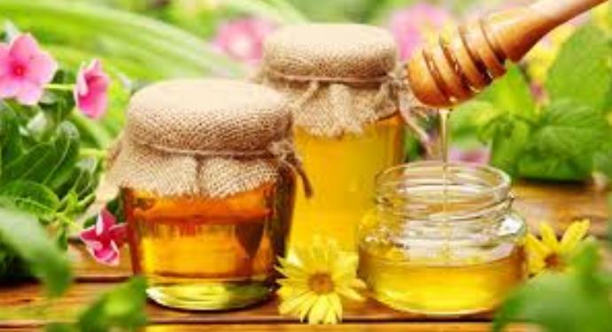 Manfaat Madu Untuk Kesehatan Tubuh Dan Takaran Minum Madu Dalam Sehari