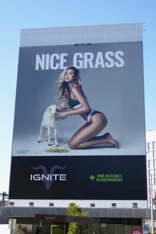 Giant Ignite Nice grass goat billboard