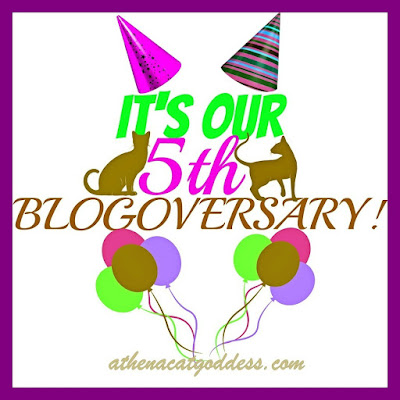 fifth blogoversary