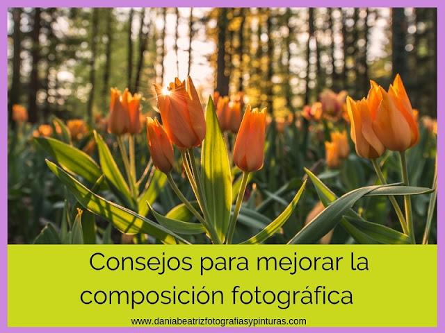 curso-de-fotografia-para-aficionados