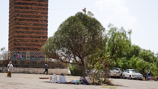 Eritreans like to sit under trees