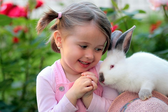 Caring for Your Rabbit 1
