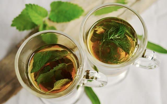 Konsumsi ramuan herbal, tidak ada kata kuno untuk kesehatan