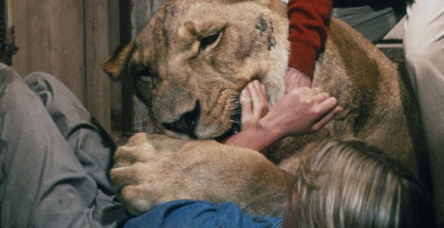 Film Dengan Masa Produksi Paling Lama, Puluhan Tahun Film ini Baru Kelar Syuting