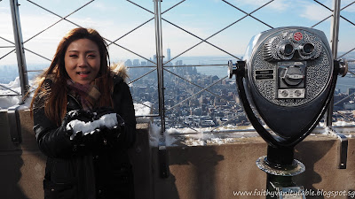 travel tips new york by singaporean