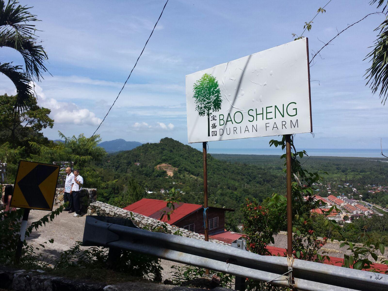 Hasil gambar untuk Bao Sheng Durian Farm