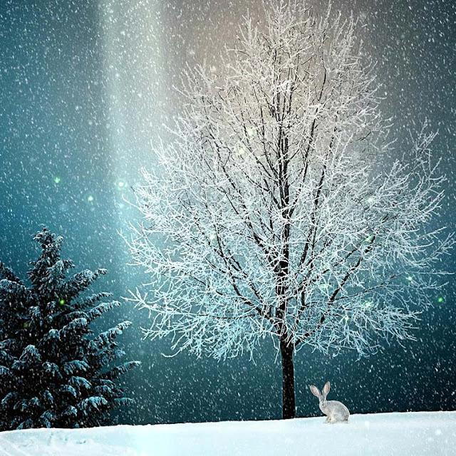 Snow Bunny Wallpaper Engine