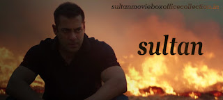 sultan movie seen in salman khan photo hd photo sultan 2016