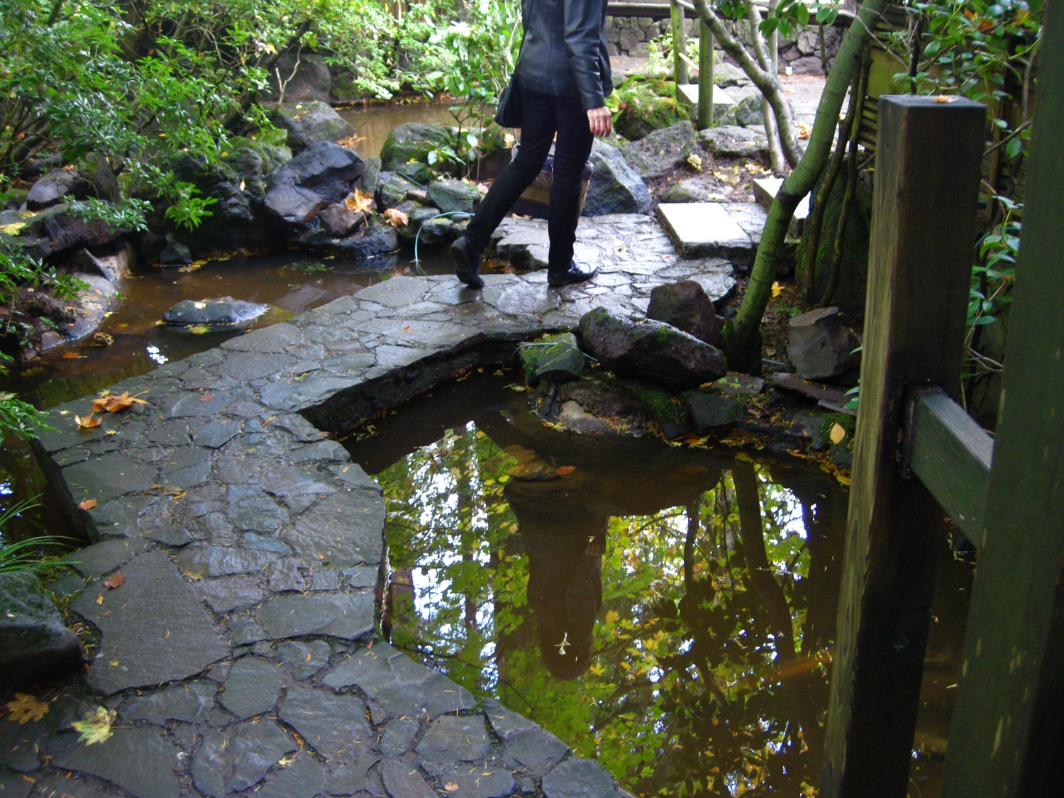 June Anderson in Natural Garden at Portland Japanese Garden