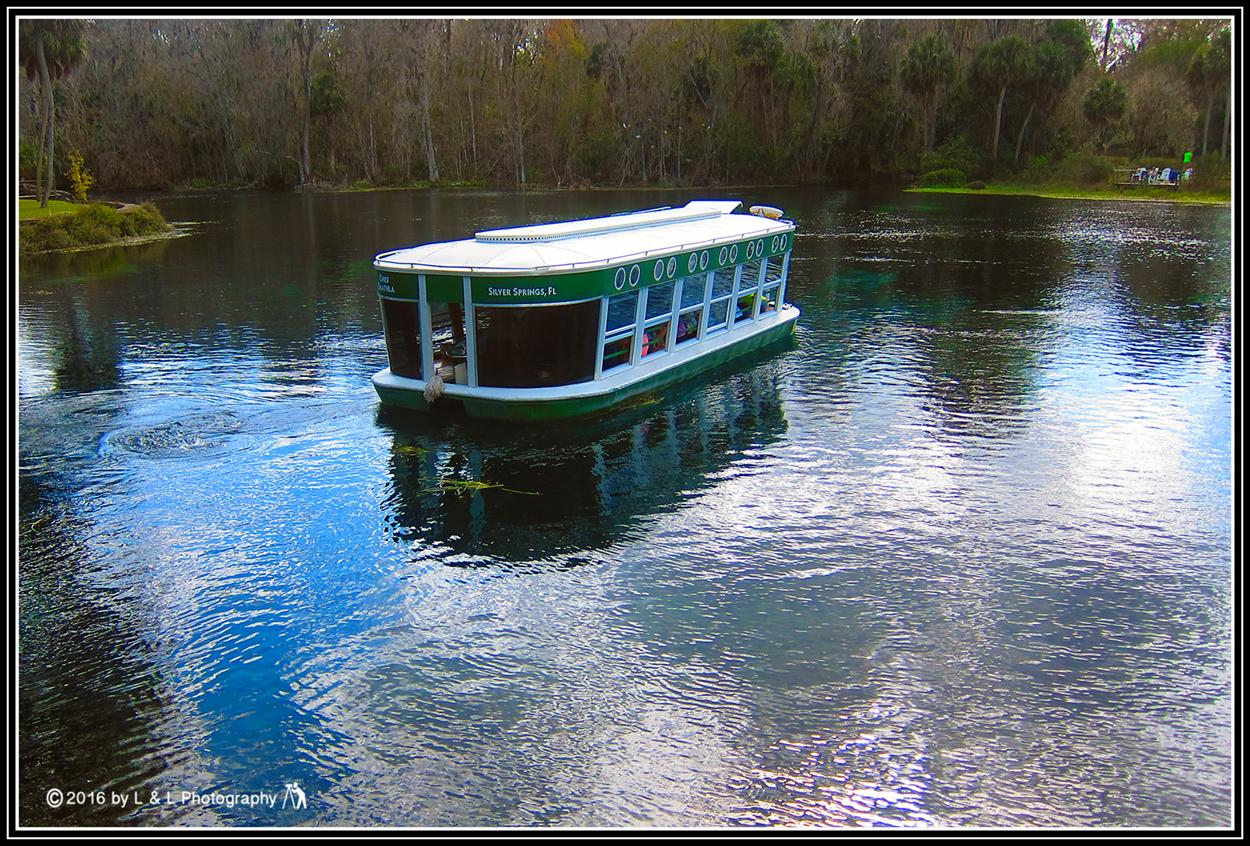 Springs Glass Bottom Boat - Ass-5762