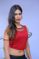 Telugu Actress Nishi Ganda Stills in Red Blouse and Black Skirt at Tik Tak Telugu Movie Audio Launch .COM 0222.JPG