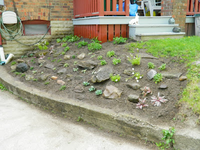 Forest Hill Toronto new rock garden after by Paul Jung Gardening Services Inc