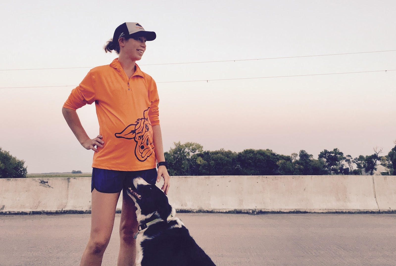 life to the full reflective gear for four legged runners stunt