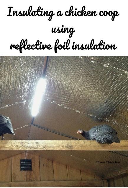 Coop insulation