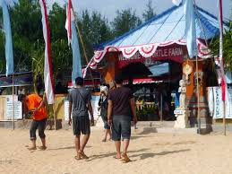 Turtle Island - Pulau Penyu - Bali