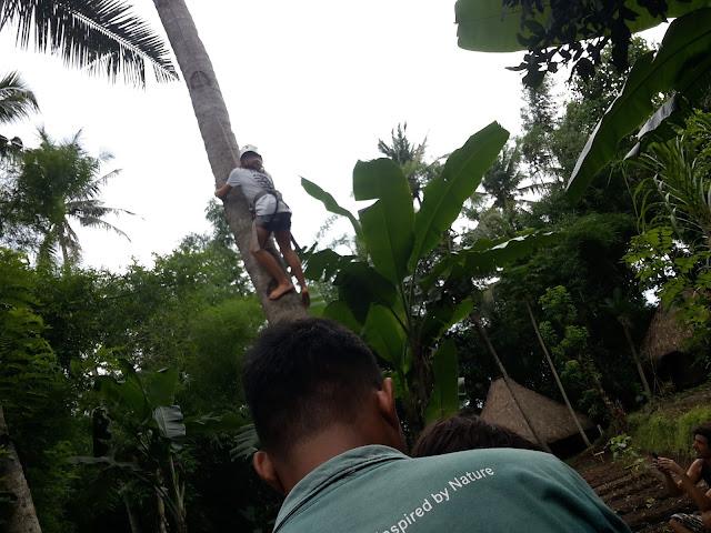 HOLIDAY BALI INDONESIA - FAMILY CAMP DI GREEN CAMP BALI DAY 2