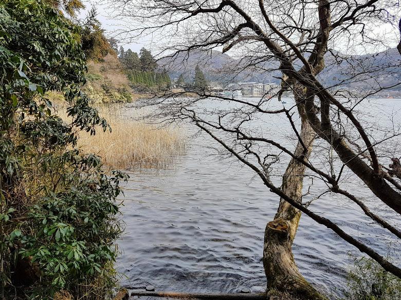 蘆之湖岸邊景色,水很乾淨呢