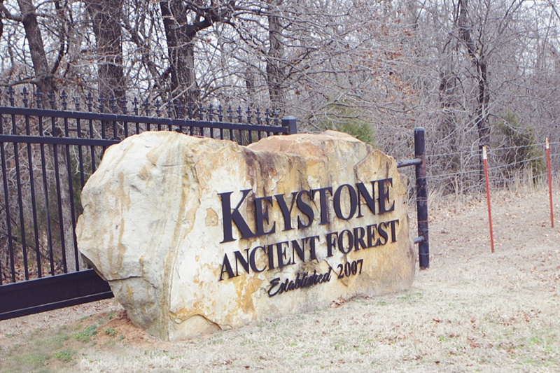 Ancient Forest Keystone, Oklahoma