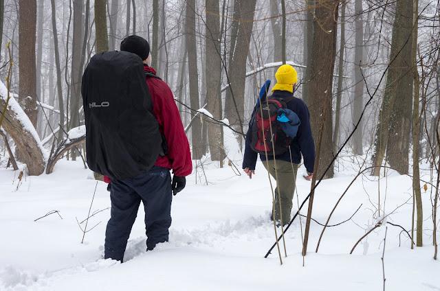 лісова дорога до покинутої бази ППО