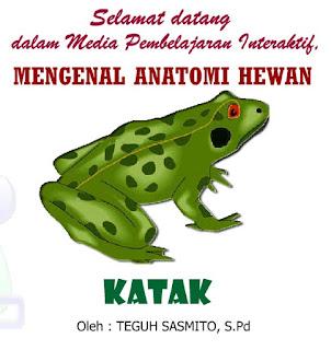 "Mengenal Anatomi Hewan ""Katak"" (Ilmu Pengetahuan Alam)"