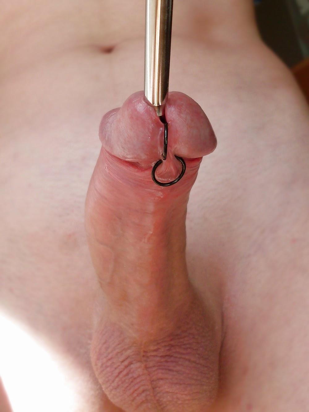 Urethral Sounding Cum