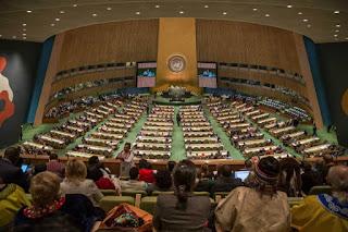 LP3BH: Desakan Pemimpin Pasifik terkait Papua di PBB Punya Landasan Kuat