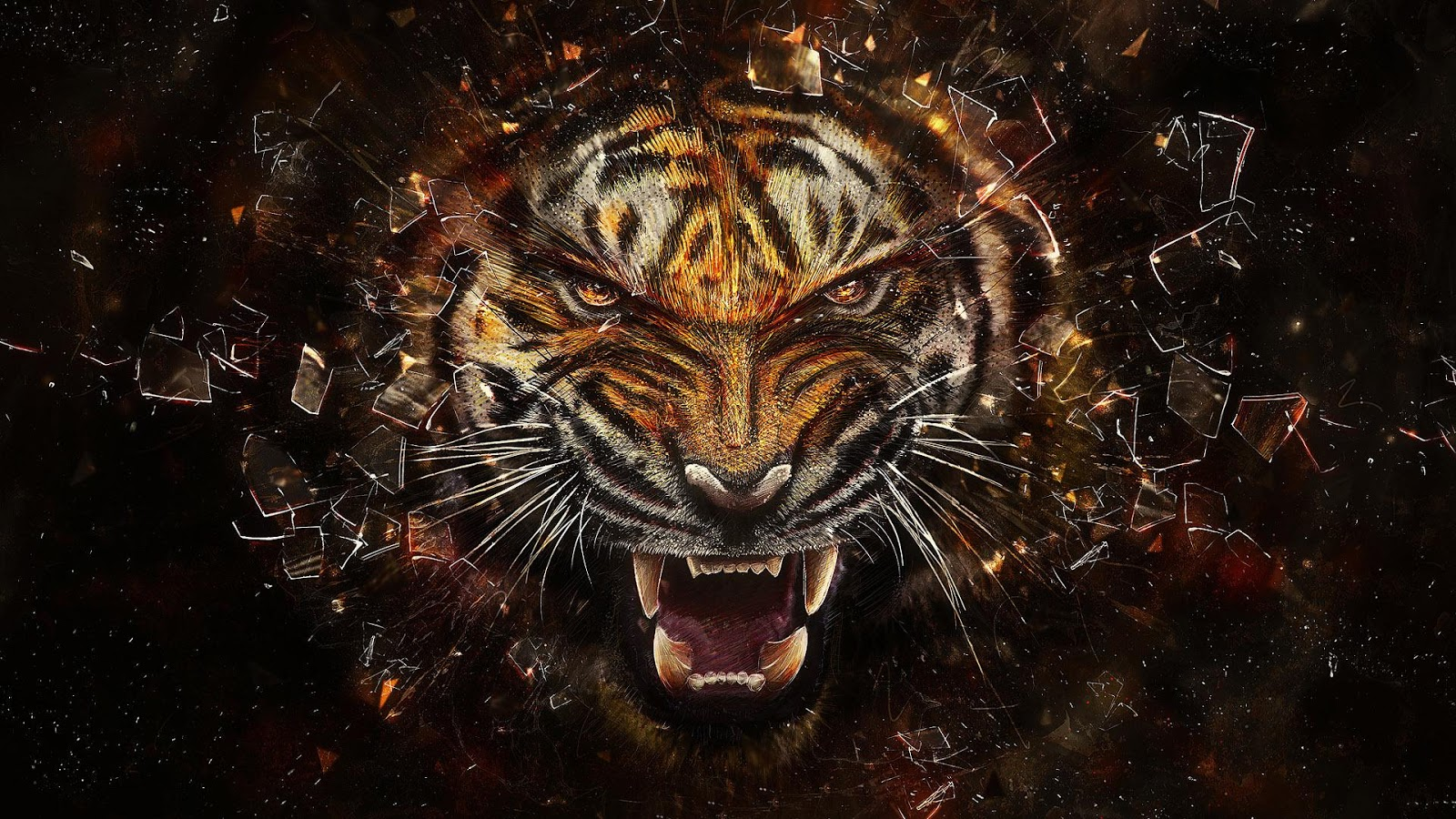 Imagenes de tigres para fondo de pantalla hd fondos de for De pantalla fondos de pantalla