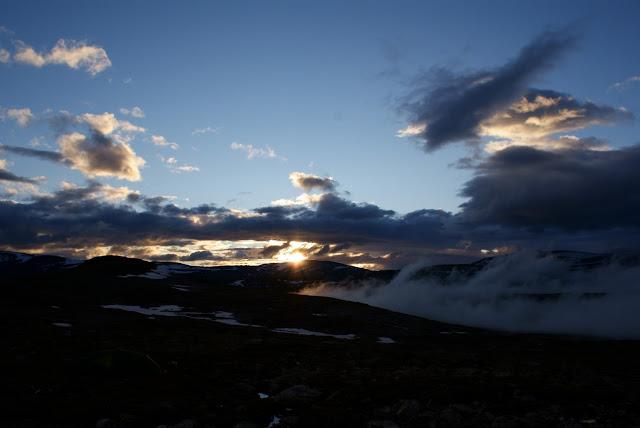 Dovrefjell-Sunndalsfjella nationalpark