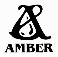 Wydawnictwo Amber