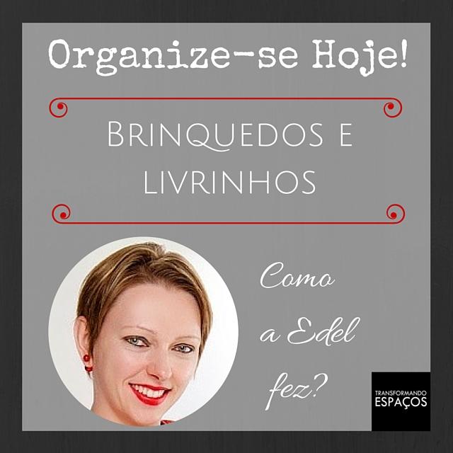 Desafio Organize-se Hoje! | Organizando os Brinquedos e Livrinhos - Como a Edel fez?