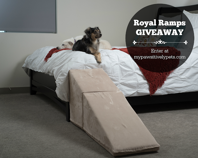 Royal Ramps Giveaway - enter at http://www.mypawsitivelypets.com/2016/09/3-benefits-of-using-furniture-ramps-for.html