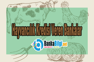 Hayvancılık Kredisi Veren Bankalar