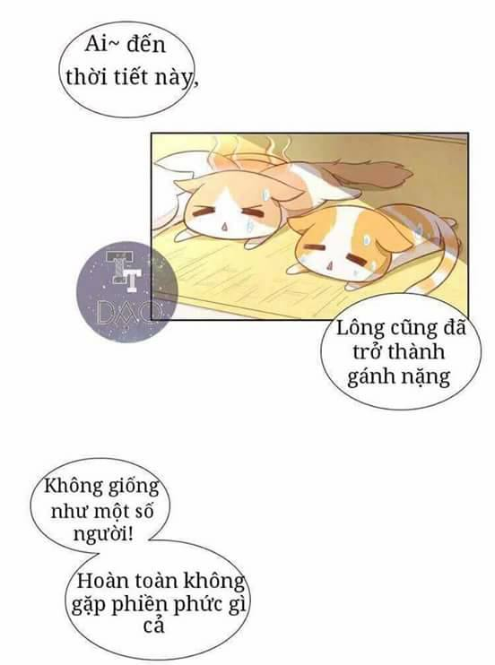 Dưới Móng Vuốt Mèo Chap 3
