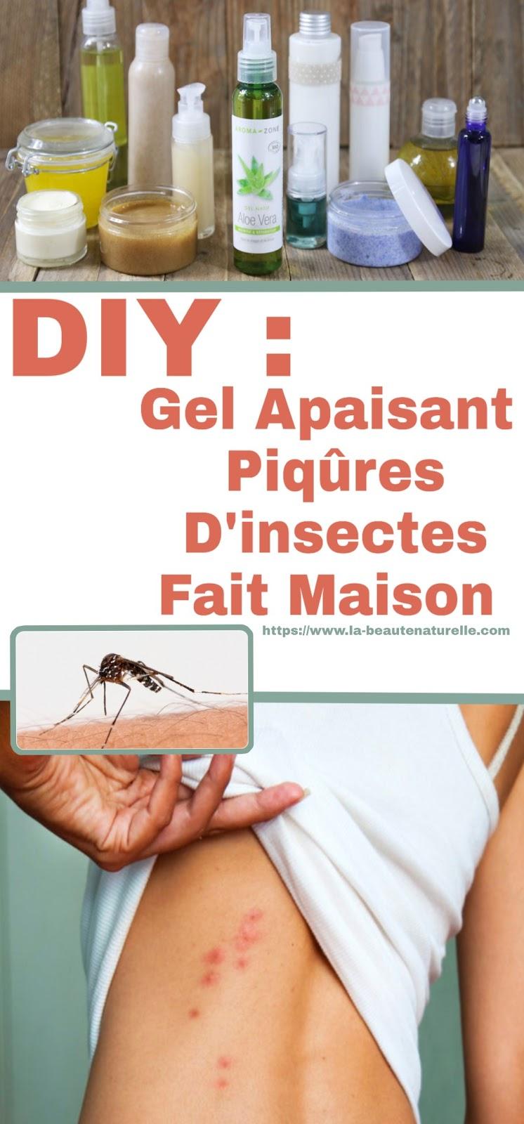 DIY : Gel Apaisant Piqûres D'insectes Fait Maison