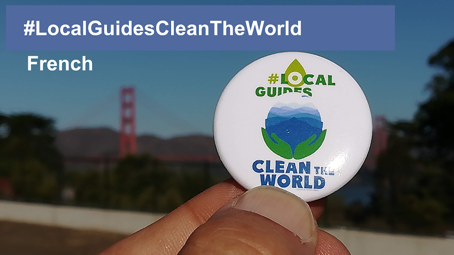 Local Guides Clean the World project