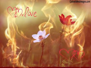 aşk sözleri sevgiliye