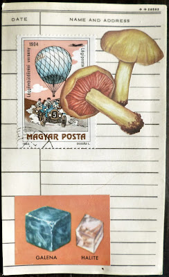 postage stamp mushroom mail art fluxus library card collage