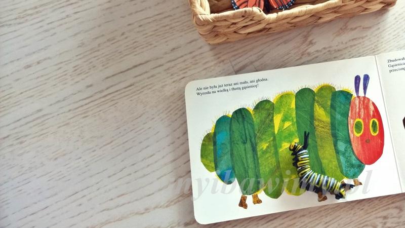 Montessori - przyroda