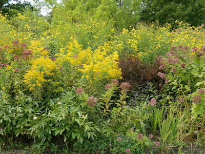 Perennial border in the fall at the Toronto Botanical Garden by garden muses-not another Toronto gardening blog