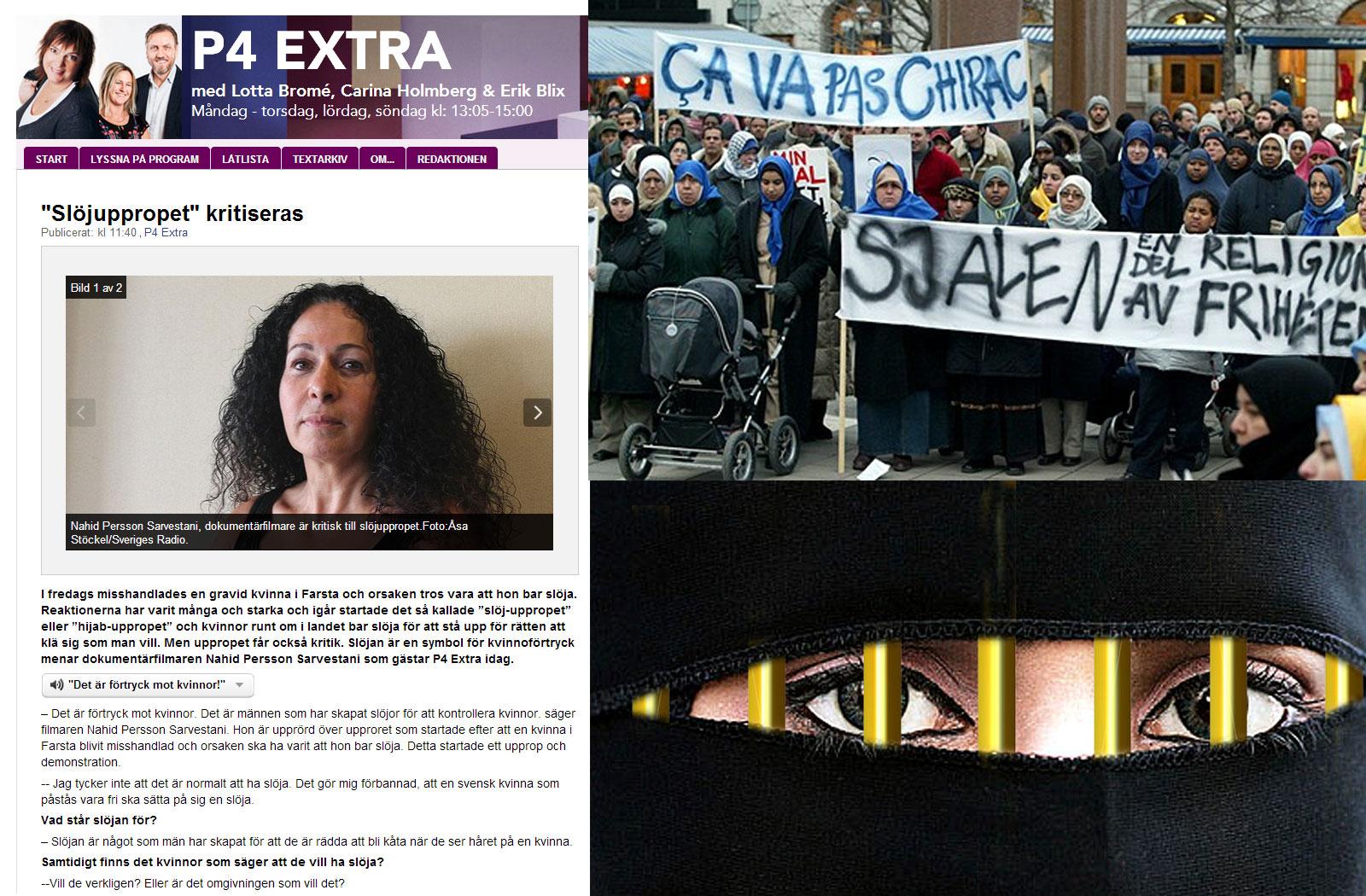 Romson slar ifran sig kritiken kravs riksdagsmajoritet