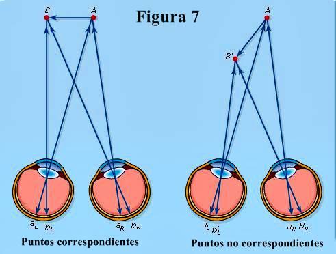 Percepción de profundidad: correspondencia de puntos