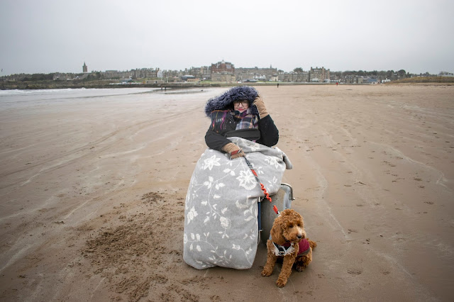 Woman sat in beach wheelchair wearing black coat and covered in grey blanket, she's holding the lead of a red and white cockapoo puppy