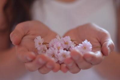 Дарите друг другу цветы доброты