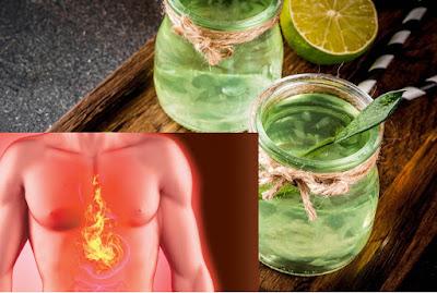 Jus d'Aloe Vera pour soulager les brûlures d'estomac en 1 jour!