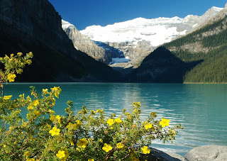 Lake Louise and Beautiful Flowers