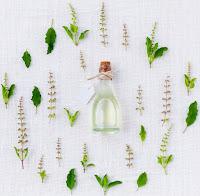 Frasco de vidro com líquido tampado com rolha e circundado de folhas e flores verdes,