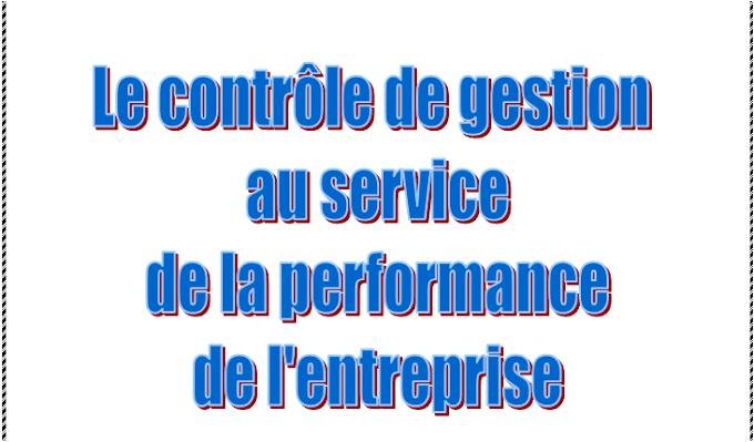 Mémoire de  contrôle de gestion au service de la performance de l'entreprise